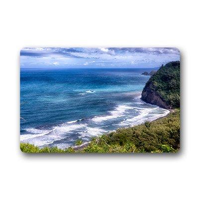 Dalliy personnalisée hawaïen Paillasson Intérieur/extérieur 59,9x 39,9cm Environ 59.9cmx39.8cm, Tissu, D, 23.6
