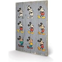Mickey Mouse - Evolution Cuadro De Madera (60 x 40cm)