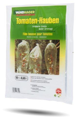 Windhager 05626 Housse Perforée pour Tomate Transparent
