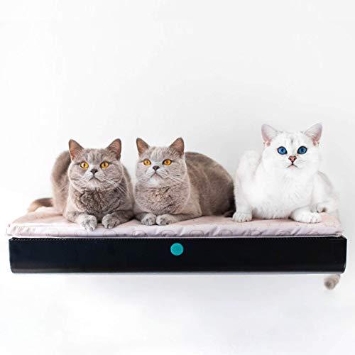 Teller und Hängematte. 'Einheit für hohe Rückenlehne und Entspannung. Modern Cat Bett/Regal. -
