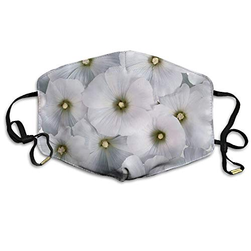 Daawqee Staubschutzmasken, Flowers Pollen Mask Unisex Fashion Antidust Face Mouth Mask Muffle Flu Surgical Washable Warm Reusable Ski Cycling Mask (Royal Herren Maske)