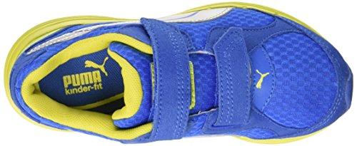 Puma Descendant V JR Kids Chaussures de course blue