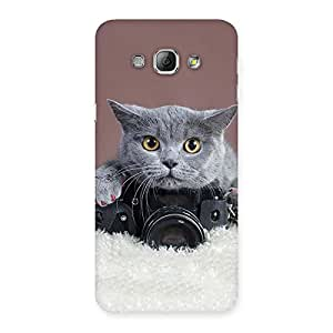 Special Kitty Photographer Multicolor Back Case Cover for Galaxy A8