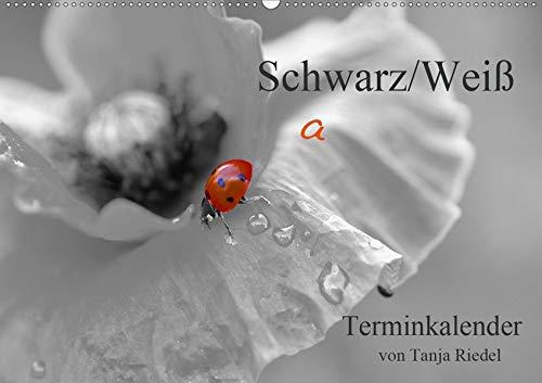 Schwarz-Weiß Malereien Terminkalender von Tanja Riedel für die SchweizCH-Version (Wandkalender 2020 DIN A2 quer): Tolle Schwarz-Weiß Fotografien mit ... 14 Seiten ) (CALVENDO Lifestyle)