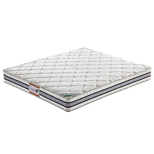 XingFuRenJia Comfort Sleep Frühjahr Matratze Grün Schaumstoff zertifiziert, erhältlich in verschiedenen Größen,Samtstoff (180X200X20)