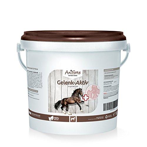 AniForte Teufelskralle Gelenk Aktiv Pulver 1 kg für Pferde, Neue Bewegungs-Freude in der Natur, Ohne Zusatzstoffe