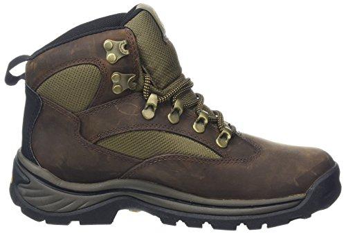 Timberland Chocorua Trail, Women's Boots 7