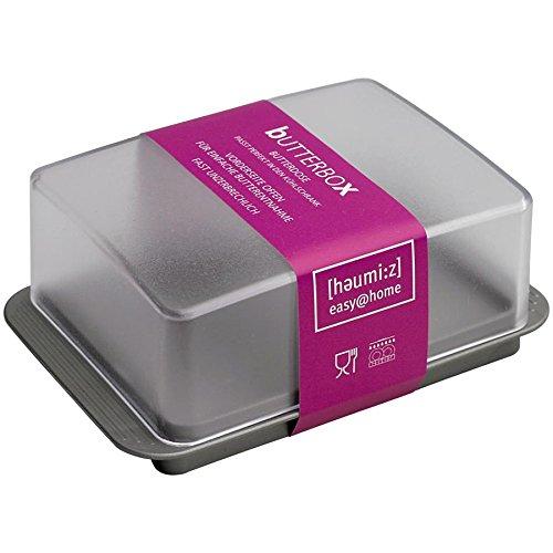 HomeXpert 302316 Beurrier Plastique Argent 15 x 10 x 10 cm