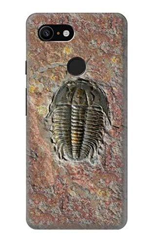 Innovedesire Trilobite Fossil Hülle Schutzhülle Taschen für Google Pixel 3