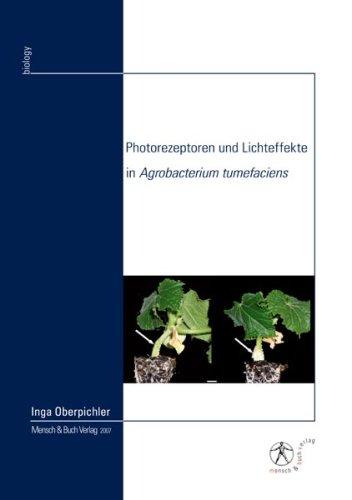 Photorezeptoren und Lichteffekte in Agrobacterium tumefaciens