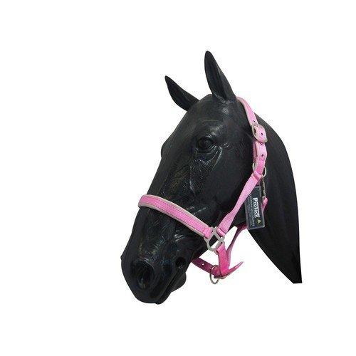 Pro Tack Halfter Komfort (Pony) (Pink/Rosa) -