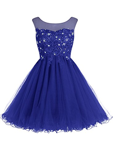 bbonlinedress-short-tulle-scoop-prom-dress-with-appliques-homecoming-dress