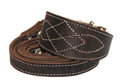 Real Leather Whippet Italian Greyhound small Dog puppy Collar and