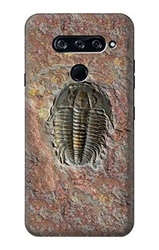 Innovedesire Trilobite Fossil Hülle Schutzhülle Taschen für LG V40, LG V40 ThinQ