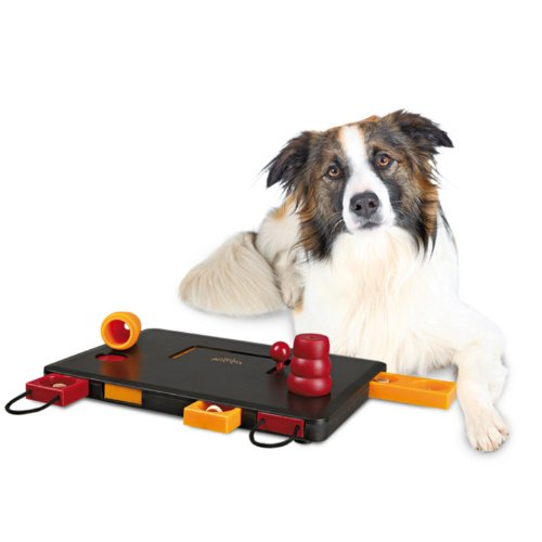 TRIXIE Intelligenzspielzeug DOG ACTIVITY Move2Win fuer Hunde, 32025 - 2