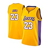 Herren-Basketballtrikots, Lakers #23 Lebron James Sommerwesten Oberteile Ärmellose T-Shirts (Größe: S-XXL)
