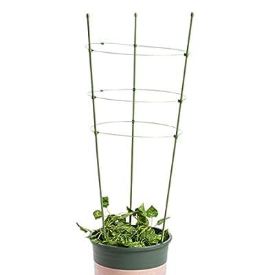 Freahap Pflanzstützen Blumenstütze Rohr Durchmesser 0,7cm von Hengfey auf Du und dein Garten
