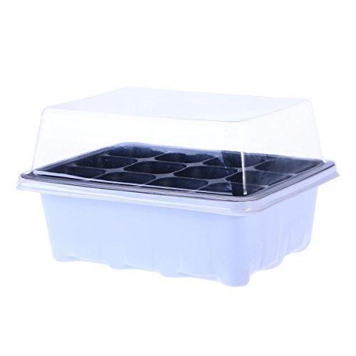 Yardwe Setzling Starter Tabletts Pflanzensamen Zuchtbox Pflanzgefäße Keimschale mit Kuppel und...