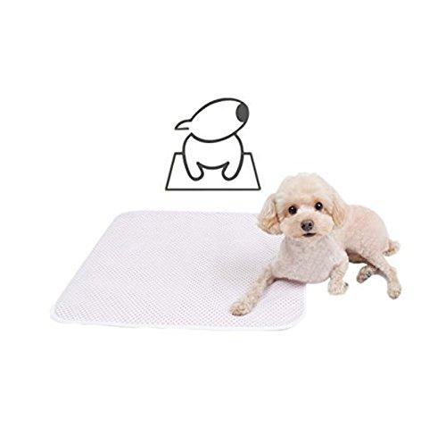 (Videoleuchte) Breite Wiederverwendung sehr lang Gebrauch Dog Pads Pet Training Pads Umweltfreundlich, Reusable
