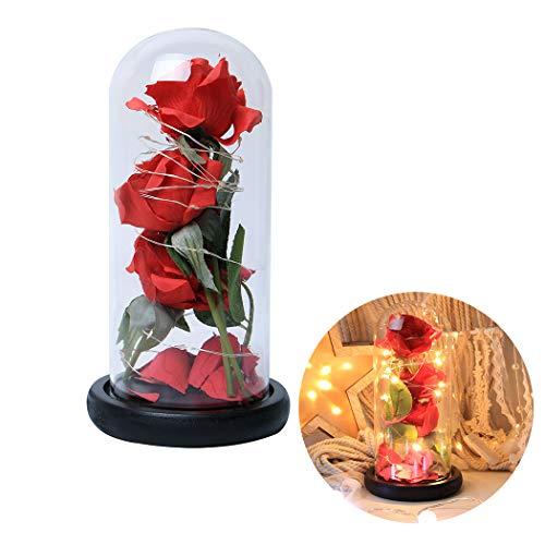 FunPa Rose im Glas, Ewige Rose im Glas Schöne und das Biest LED Künstliche Rose Blumen Konservierte Rose LED Lichterketten Romantisch Geschenk zum Geburtstag Jahrestag Haus Weihnachten Dekoration
