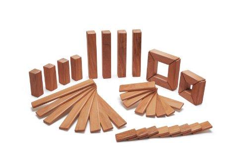 40-piece-tegu-explorer-magnetic-wooden-block-set-mahogany