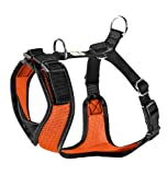 Hunter Maui Vario Rapid Geschirr, 23 x 35–42 cm, Gr. XS, Orange