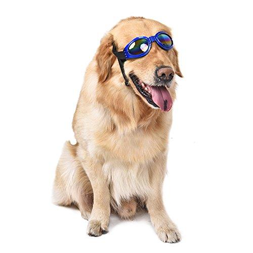 Ducomi® Vincent - Occhiali da Sole per Cani Pieghevoli con Elastico Regolabile - Proteggono il Vostro Amico a Quattro Zampe da Sole Vento e Polvere (18 x 5,2 cm) (Blue)