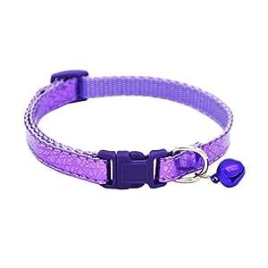 Best Luxury Dog Collar Brands