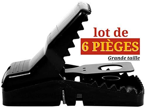 OFIUN - Piège à Rat et Souris (Lot de 6 pièces) Simple d'utilisation, Puissant et Efficace, Dératisation Mort instantanée sans Souffrance/Bonus - Paire Gant Latex et Sac Poubelle