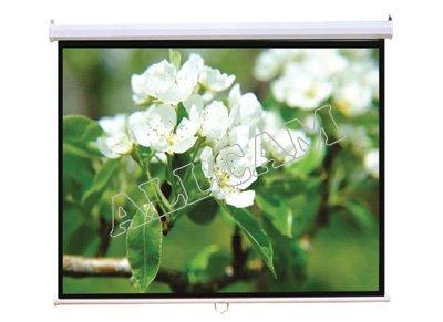Allcam PCW92MM 92' schermo del proiettore 16: 9 widescreen opaco bianco manuale