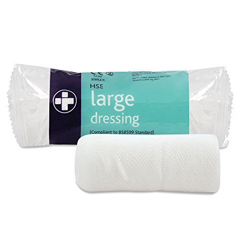 reliance-medical-18-x-18-cm-large-hse-dressing-bandage-and-pad-for-ref-317-pack-of-10
