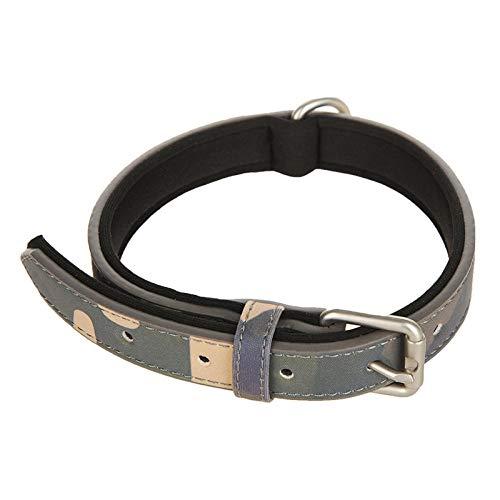 Heimtierbedarf Hundehalsband klein groß Hundehalsband Hund mit Kätzchenhals Set doppelschichtige magische Farbe Kragen Tinte grün_S- geeignet für Halsumfang 25-32cm - 29 Farbe Tinte