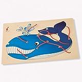Dida - Allacciatura Balena - Il gioco dei lacci per sviluppare la manualità dei bambini - attività Montessori