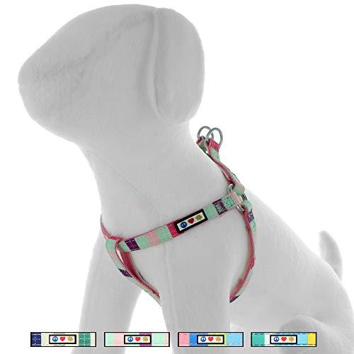 Pawtitas Step In Dog Arnés o Chaleco de arnés Entrenamiento de su arnés para Cachorros arnés Extra pequeño Turquesa/Rosa/Púrpura