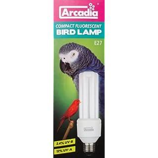 Arcadia Bird Lamp 20 Watt Energiesparlampe für Vögel UVA und UVB flimmerfrei