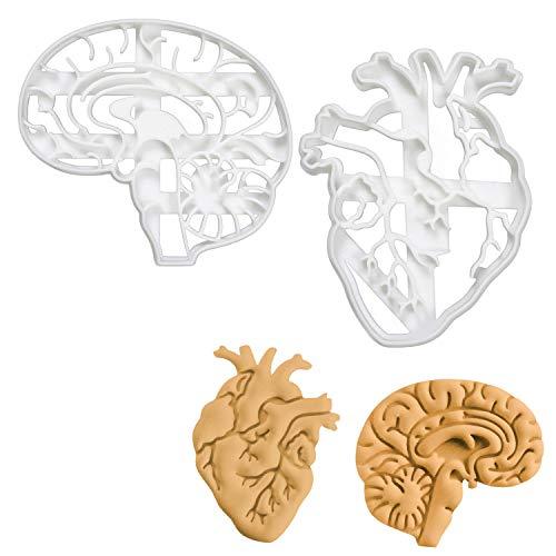 Bakerlogy 2er Set Anatomisches Herz und Gehirn Ausstechformen (Formen: Anatomisches Gehirn und Herz), 2 Teile