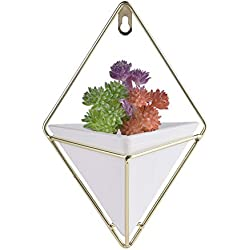 Yunt Hanging Wall Planter,Geometric Hanging Planter Pot for Indoor Wall Decor,Planter for Succulent Plants,Air Plant,Cacti,Faux/Artificial Plants