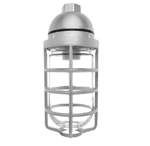 RAB Lighting VP100DG Vaporproof VP Ceiling Pendant Mount with Glass Globe and Cast Guard, A19 Type, Aluminum, 150W Power, 1/2