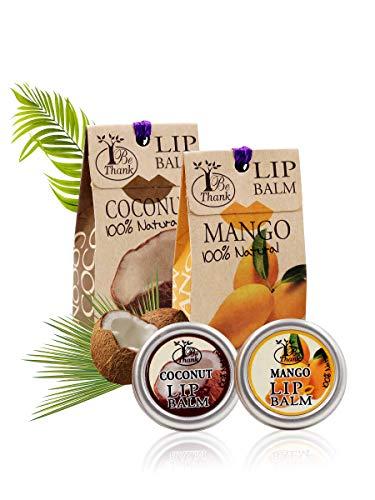 RaKao 100{1523ccbbc8c0a3c894db3dfca2f919fa6b1293007f40ceee95323e9102235ae8} Natürlicher Lippenbalsam, Umweltfreundlich/keineChemie - Perfekte Pflege für ausgetrocknete Lippen und ideal zur Vorbeugung spröder Lippen (Mango-Coconut))