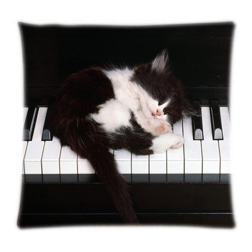 Alexander Cute DIY Katzen Feline Tastaturen Kätzchen Tiere Home Produkt Cool Cover zwei Seiten Weiche Kissenbezüge, 18x18inch (18-zoll-kamin)