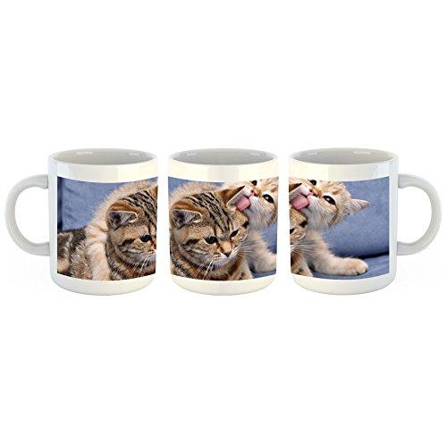 Unified Distribution Kätzchen kuscheln - Tasse mit Motiv Bedruckt, 300ml C-Henkel. Tolles Geschenk für Büro, Küche, Geburtstag, Lieblingstasse zum Frühstück -