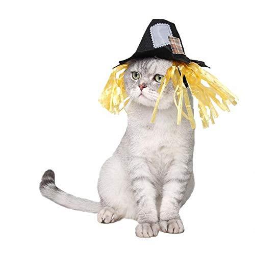 Kostüm Corgi Katze - FZ FUTURE Lustiger Fleckenvogelscheuchenhut, Halloween Haustier Pullover, Halloween Kostüm für Katze Hund, Nettes Cosplay, für Kleine Katzen Welpen Partys Feste-Größe Passend,L