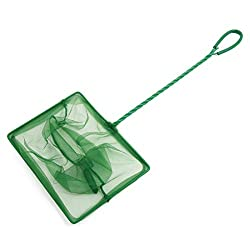SLB Works 7.8inch Wide Green Plastic Coated Handle Fish Shrimp Landing Net for Aquarium