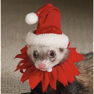 Marshall Ferret Santa Suit Marshall Ferret Santa Suit 41L 2BsaezCNL