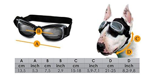 Sonnenbrille für Hunde mit UV Schutz