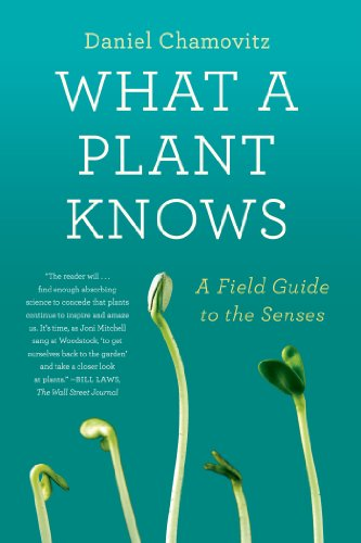 What a Plant Knows: A Field Guide to the Senses