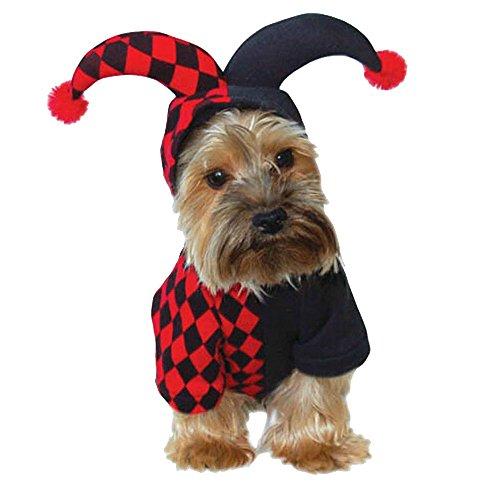 Animally® Hunde Harlekin Kostüm - Clown Karneval (Kostüme Clown Hunde Für)