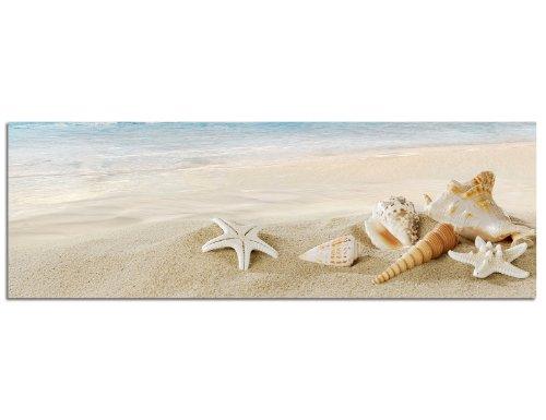 Panorama su tela e telaio 120x 40cm sabbia spiaggia mare conchiglie lumaca case
