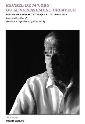 Michel de M'Uzan ou le saisissement créateur : Autour de l'oeuvre théorique et fictionnelle