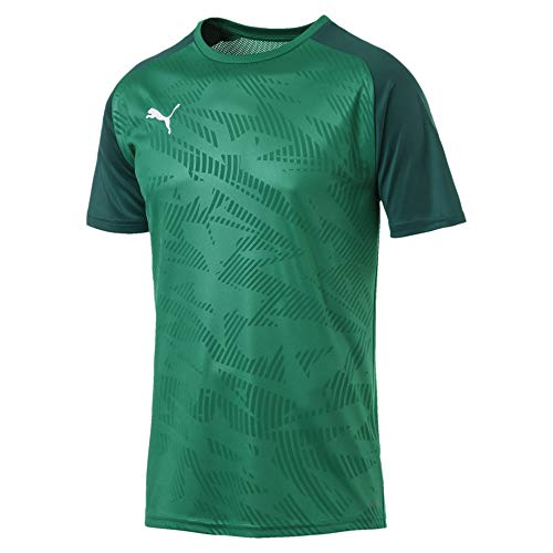PUMA Herren Cup Training Jersey Core Trainingsshirt, Pepper Green-Alpine Green, L
